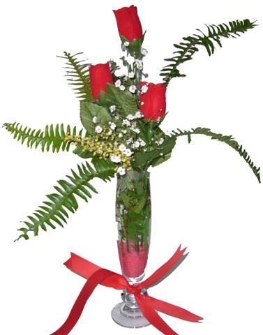 Kayseri çiçek hediye çiçek yolla  3 adet kirmizi gül ve cam tanzim