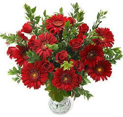 5 adet kirmizi gül 5 adet gerbera aranjmani  Kayseri çiçek çiçekçiler