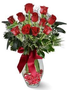 9 adet gül  Kayseri çiçek online çiçek gönderme sipariş  kirmizi gül