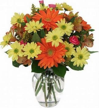 Kayseri çiçek kaliteli taze ve ucuz çiçekler  vazo içerisinde karışık mevsim çiçekleri
