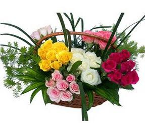 Kayseri çiçek internetten çiçek satışı  35 adet rengarenk güllerden sepet tanzimi