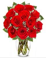 12 adet vazoda kıpkırmızı gül  Kayseri çiçek anneler günü çiçek yolla