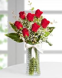 Cam vazoda 7 adet kırmızı gül  Kayseri çiçek çiçek siparişi sitesi