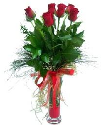 vazo içerisinde 5 kırmızı gül  Kayseri kocasinan çiçek İnternetten çiçek siparişi