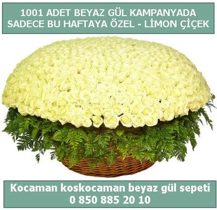 1001 adet beyaz gül sepeti özel kampanyada  Kayseri çiçek çiçek satışı