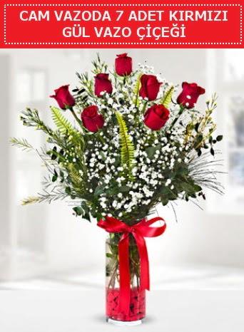 Cam vazoda 7 adet kırmızı gül çiçeği  Kayseri çiçek çiçek satışı