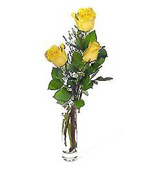 Kayseri çiçek cicekciler , cicek siparisi  3 adet kalite cam yada mika vazo gül