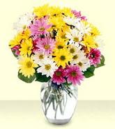 Kayseri çiçek cicekciler , cicek siparisi  mevsim çiçekleri mika yada cam vazo