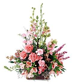 Kayseri çiçek internetten çiçek satışı  mevsim çiçeklerinden özel