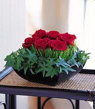 Kayseri çiçek çiçek siparişi vermek  10 adet kare mika yada cam vazoda gül tanzim
