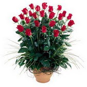 Kayseri çiçek çiçek online çiçek siparişi  10 adet kirmizi gül cam yada mika vazo