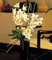 Kayseri çiçek cicek , cicekci  cam yada mika vazo içerisinde dal orkide
