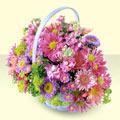 Kayseri hacılar çiçek çiçek gönderme sitemiz güvenlidir  bir sepet dolusu kir çiçegi  Kayseri çiçek çiçek satışı