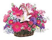 küçük karisik özel sepet   Kayseri çiçek güvenli kaliteli hızlı çiçek