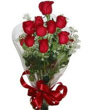 9 adet kaliteli kirmizi gül   Kayseri melikgazi çiçek çiçek yolla