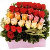 15 adet renkli gül ve cam   Kayseri çiçek internetten çiçek siparişi