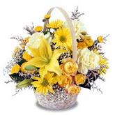 sadece sari çiçek sepeti   Kayseri çiçek çiçek satışı
