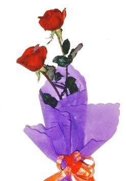 2  adet kirmizi gül buketi   Kayseri çiçek çiçek siparişi sitesi