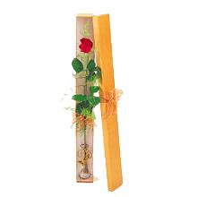 ince  kutuda  1  gül   Kayseri özvatan çiçek çiçek , çiçekçi , çiçekçilik