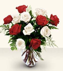 Kayseri çiçek çiçek online çiçek siparişi  6 adet kirmizi 6 adet beyaz gül cam içerisinde