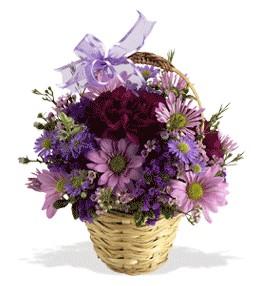 Kayseri çiçek çiçek online çiçek siparişi  sepet içerisinde krizantem çiçekleri