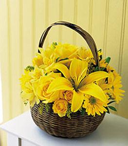 sepet içerisinde sarinin sihri  Kayseri çiçek hediye sevgilime hediye çiçek