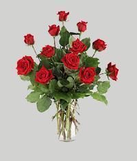 Kayseri çiçek hediye sevgilime hediye çiçek  11 adet kirmizi gül vazo halinde