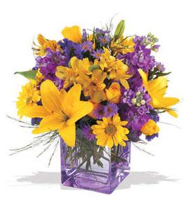 Kayseri çiçek online çiçekçi , çiçek siparişi  cam içerisinde kir çiçekleri demeti