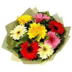 9 adet karisik gerbera demeti  Kayseri çiçek online çiçekçi , çiçek siparişi