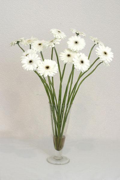 Kayseri çiçek online çiçekçi , çiçek siparişi  cam vazo içerisinde 17 adet sade gerbera