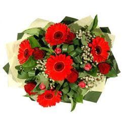 Kayseri çiçek internetten çiçek satışı   5 adet kirmizi gül 5 adet gerbera demeti