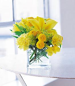 Kayseri çiçek internetten çiçek satışı  sarinin sihri cam içinde görsel sade çiçekler