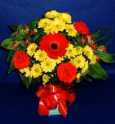 Kayseri çiçek internetten çiçek satışı  sade hos orta boy karisik demet çiçek