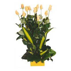 12 adet beyaz gül aranjmani  Kayseri çiçek çiçek yolla , çiçek gönder , çiçekçi