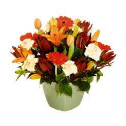 mevsim çiçeklerinden karma aranjman  Kayseri çiçek çiçek gönderme