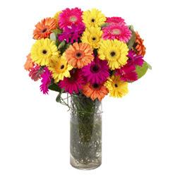 KARISIK GERBERALARDAN CAM VAZO TANZIMI  Kayseri kocasinan çiçek İnternetten çiçek siparişi