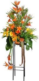 Kayseri çiçek çiçek siparişi vermek  perförje tanzimi dügün nikah ve açilislara