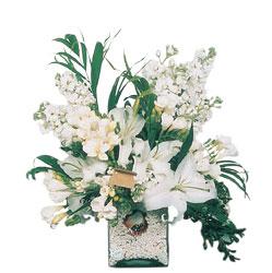 Kayseri çiçek cicekciler , cicek siparisi  sadece beyazlardan olusmus mevsim cam yada mika tanzim