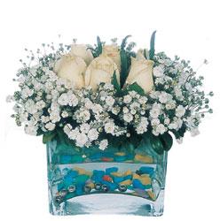 Kayseri çiçek internetten çiçek siparişi  mika yada cam içerisinde 7 adet beyaz gül