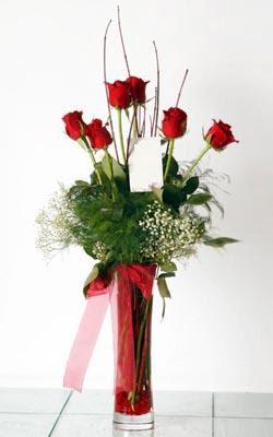 Kayseri çiçek hediye sevgilime hediye çiçek  6 adet kirmizi gül ve cam yada mika vazo