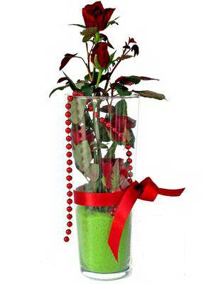 Kayseri çiçek 14 şubat sevgililer günü çiçek  Cam yada mika içerisinde 9 adet kirmizi gül - sevdiklerinize özel
