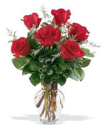 Kayseri çiçek çiçek satışı  7 adet kirmizi gül cam yada mika vazoda sevenlere