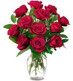 Kayseri çiçek 14 şubat sevgililer günü çiçek  1 düzine kirmizi gül sevenlere özel vazo gülleri
