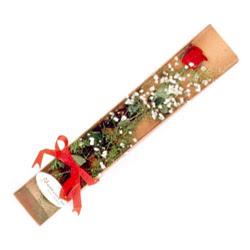 Kayseri çiçek çiçek siparişi sitesi  Kutuda tek 1 adet kirmizi gül çiçegi