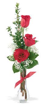 Kayseri çiçek hediye sevgilime hediye çiçek  mika yada cam vazoda 3 adet kirmizi gül