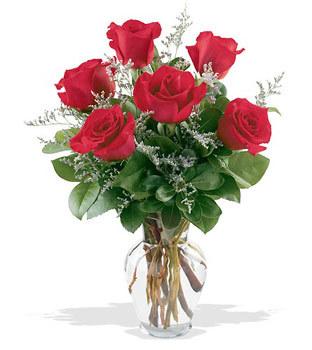 Kayseri çiçek hediye sevgilime hediye çiçek  cam yada mika vazoda 6 adet kirmizi gül