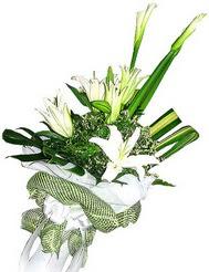 Kayseri kocasinan çiçek İnternetten çiçek siparişi  3 dal kazablanka çiçegi ve yesillikler