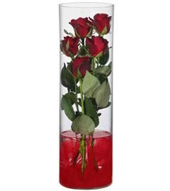 cam içerisinde 7 adet kirmizi gül  Kayseri çiçek cicek , cicekci