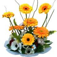 camda gerbera ve mis kokulu kir çiçekleri  Kayseri çiçek hediye çiçek yolla