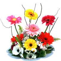 Kayseri çiçek çiçekçiler  camda gerbera ve mis kokulu kir çiçekleri
